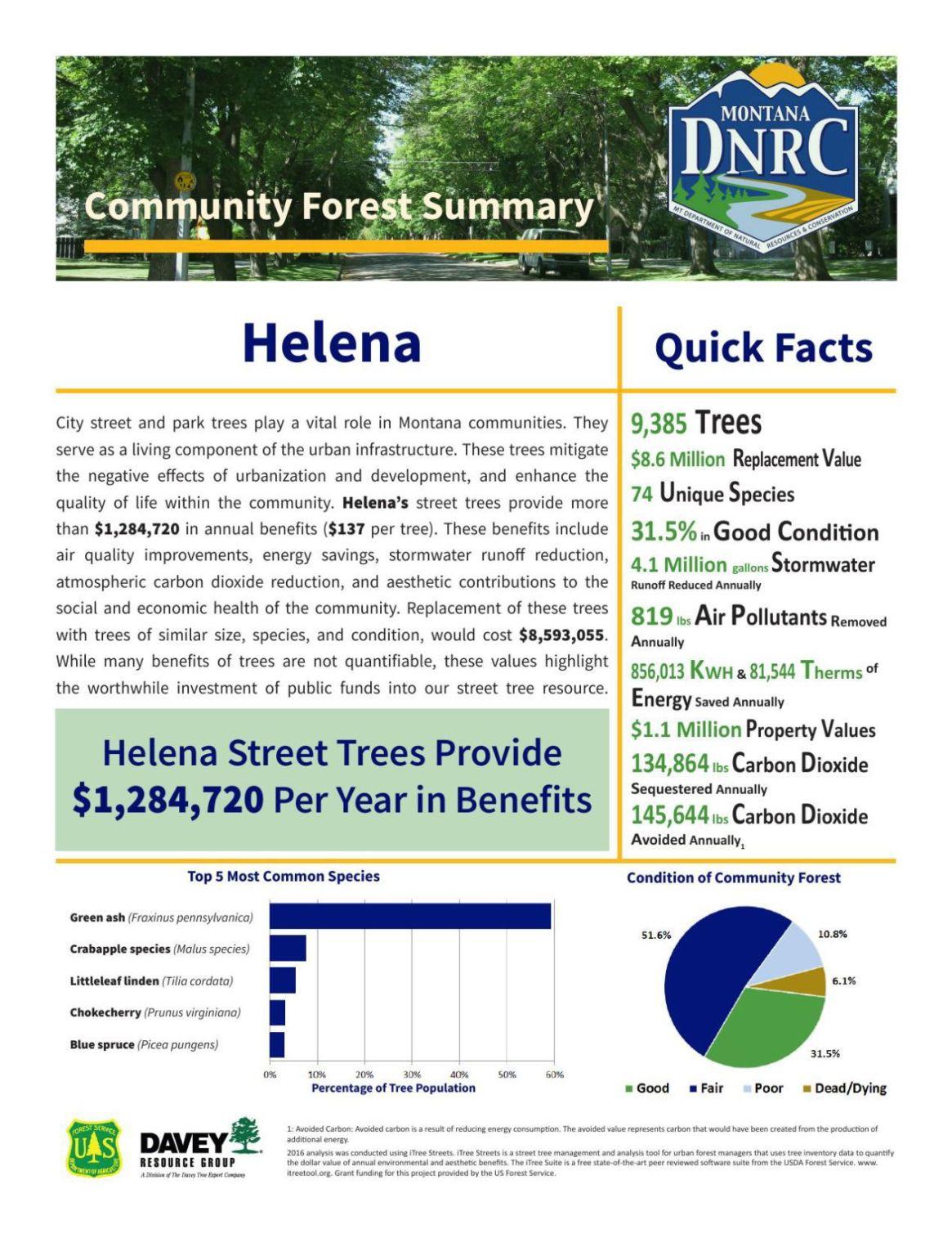 Community Forest Survey - Helena