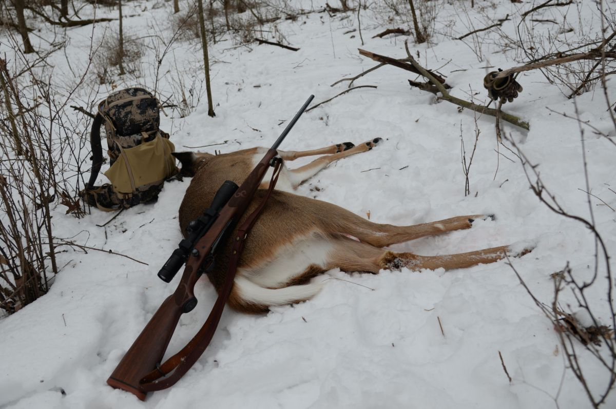 Patrick Durkin: A holiday hunt worth celebrating in ...