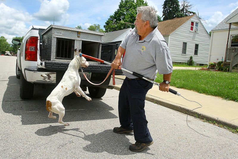 Bryant looks to keep pets  owners in line as animal control officer     Animal Control Officer Billy Bryant