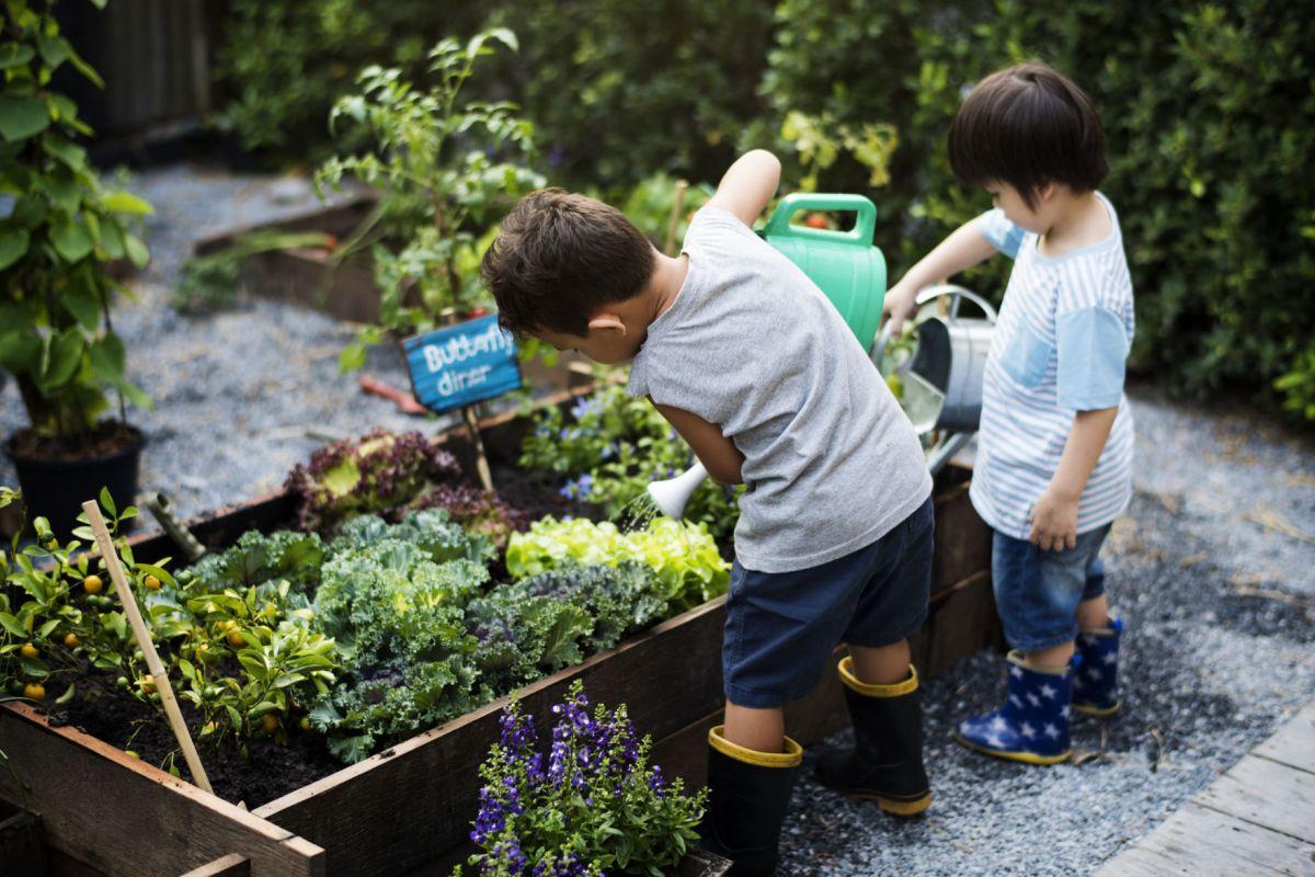How gardening can help build healthier, happier kids ... on Gardening  id=39970