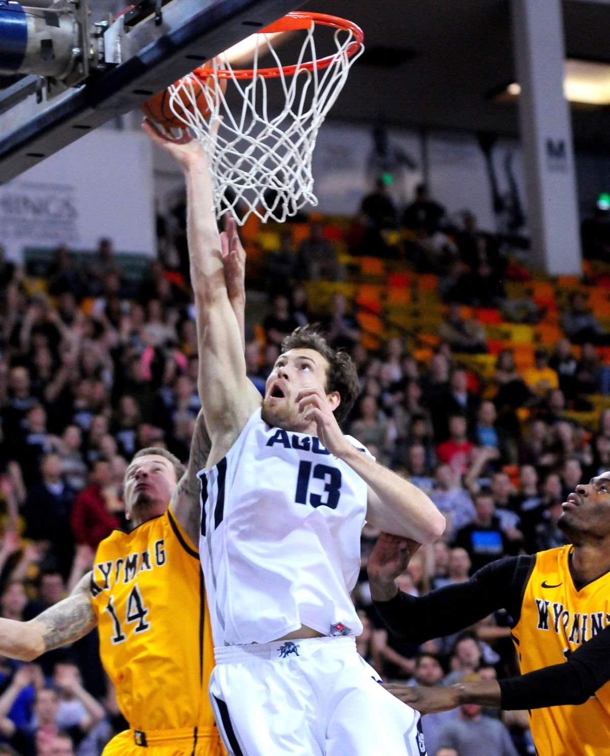 Photo Gallery: Wyoming-Utah State Basketball   Multimedia ...