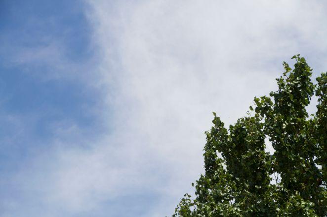 weather3.jpg