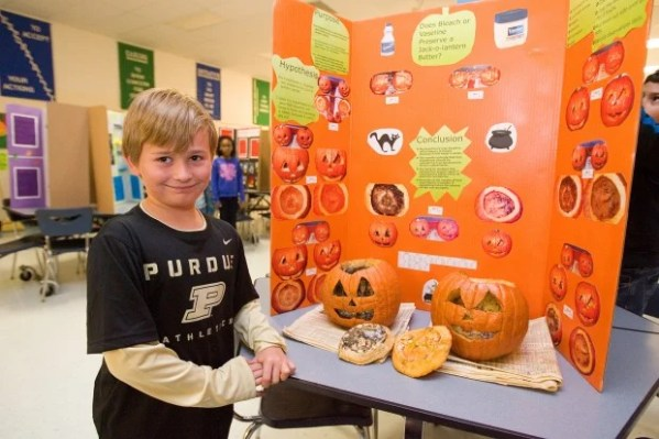 Saylor Elementary students present science projects