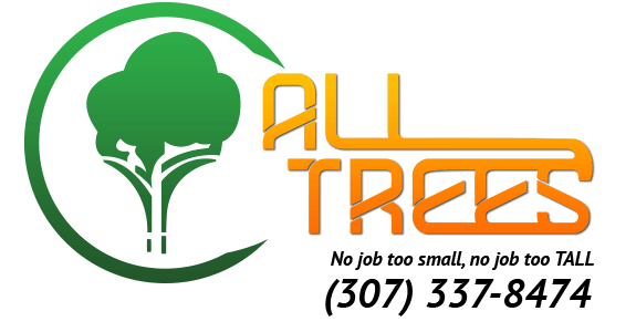 All Trees LLC