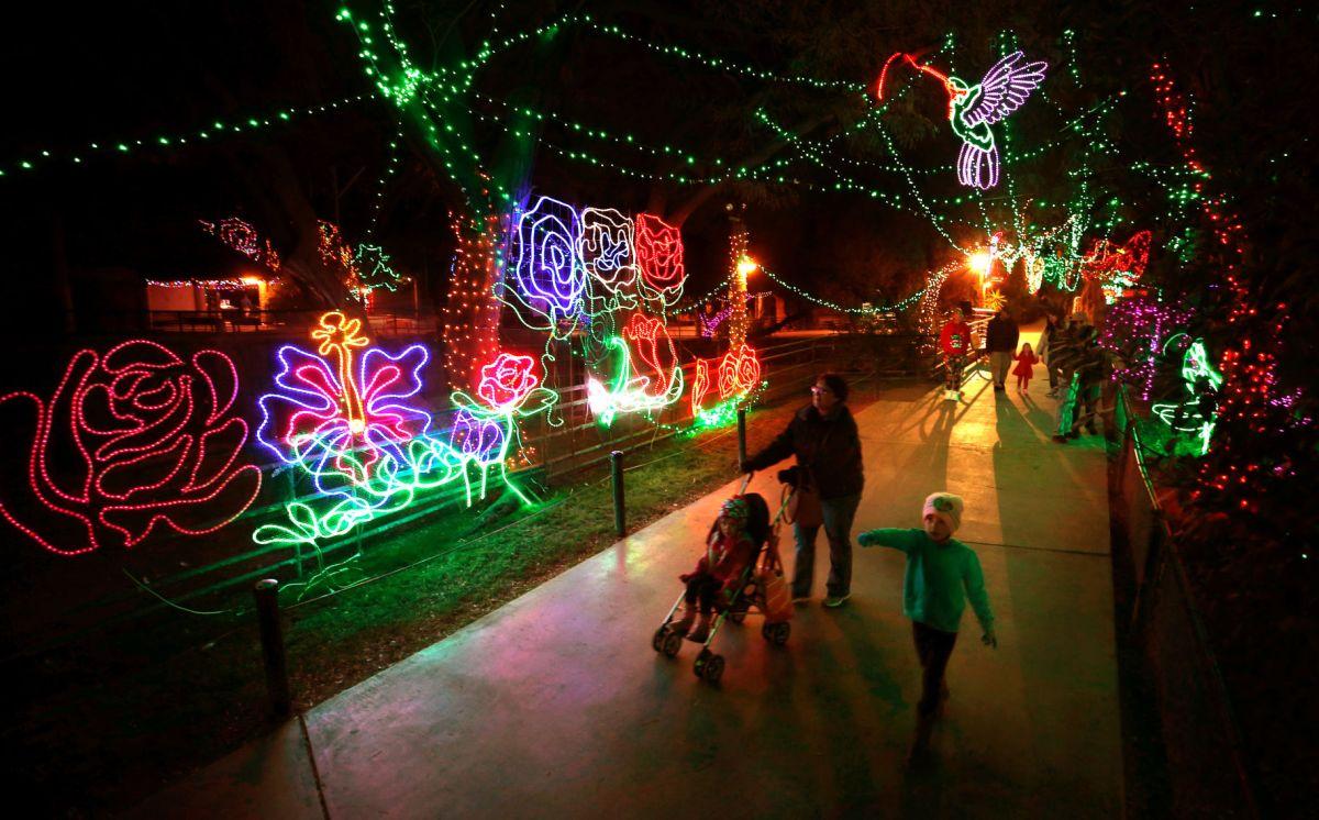 Zoo Lights Phoenix Az 2017
