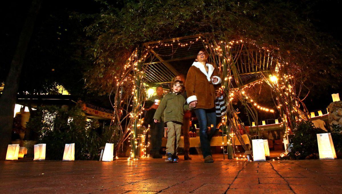 Tucson Zoo Lights