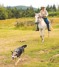 Long rider Bernice Ende to hoof 7,000 miles by fall