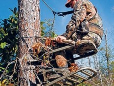 Tree stand safety starts with harness | Opinion | dothaneagle.com