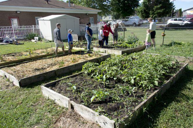 Carver Community Gardens