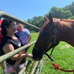 First Horse Rescue Family Fun Day Held In Afton Local News Newsadvance Com