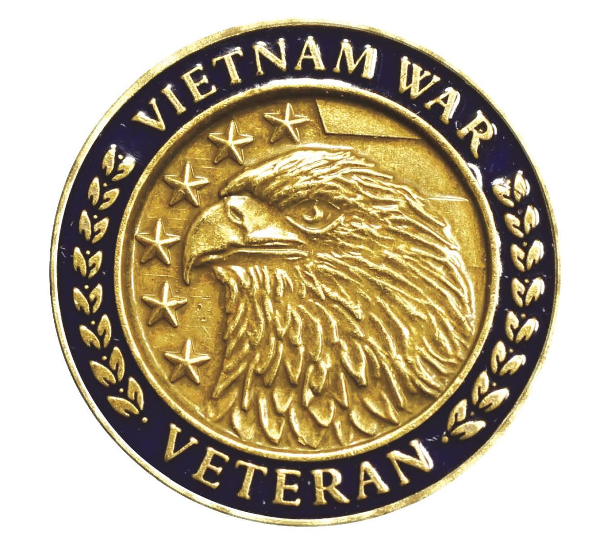 U.S. issues pin to honor Vietnam veterans | State News ...