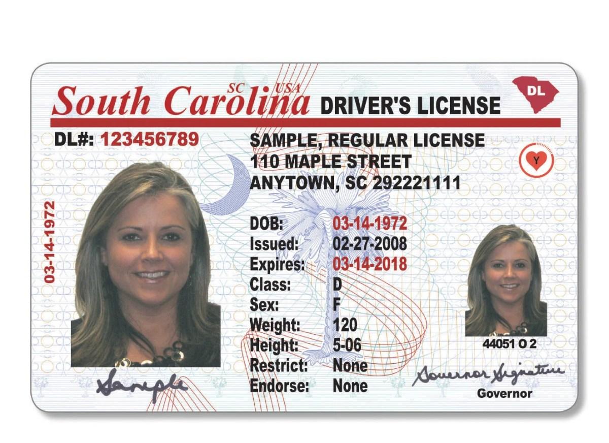 License Carolina License Drivers Drivers North Carolina North 2013 2013