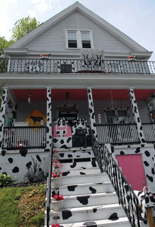 Cow House Reflects Owner S Spirit