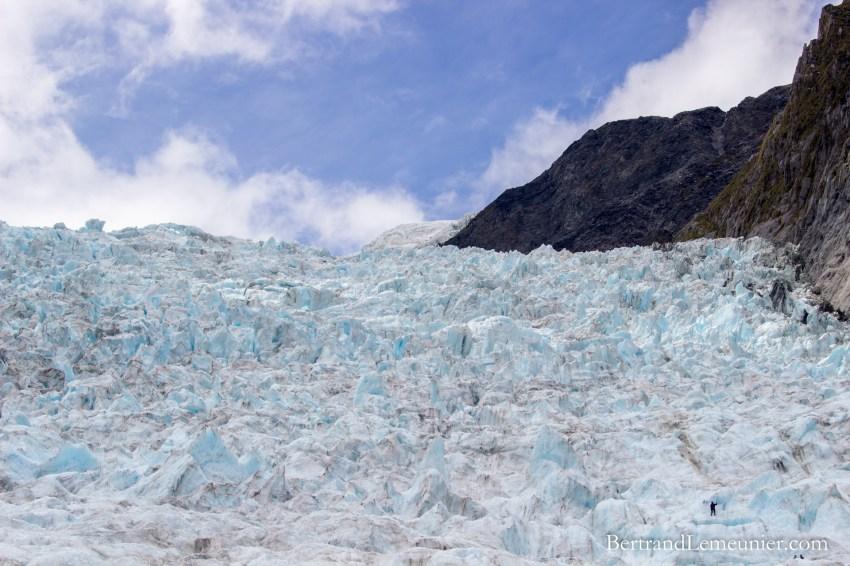 NZ_Westland_Fox-Glacier_ TERRA-TRIBUTA-13