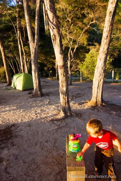 Camping sous les arbres à Bark Bay