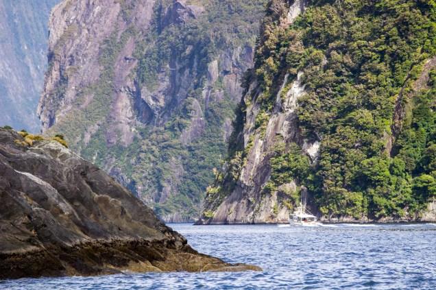 19-Parc-National_Fiordland_croisiere_bateau_fjord_NZ_Terra-Tributa