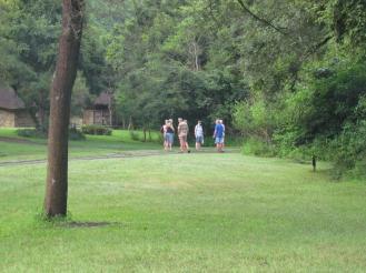 Campsite birding