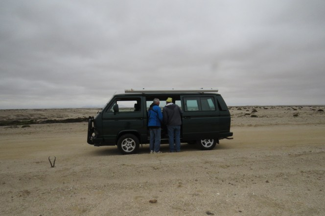 With Mark Bororman looking for Gray's Lark
