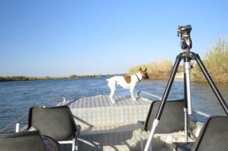 Boating down the Kavango river.