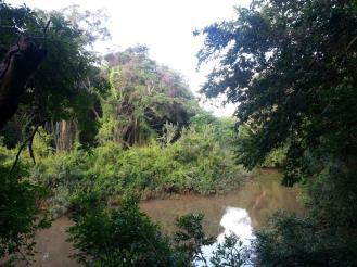 Southern Pongola Walk