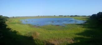 View from Mafazana Hide