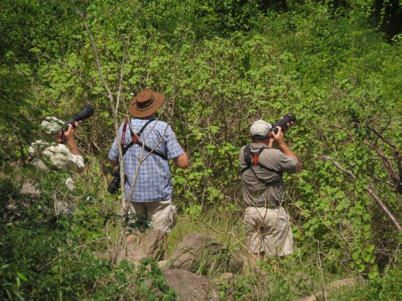 Birder photographers