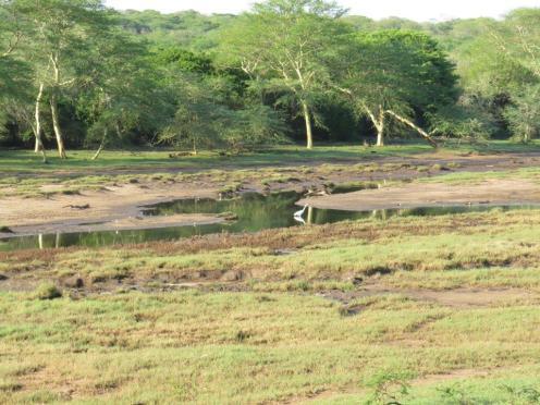 Nyamithi Pan - western side