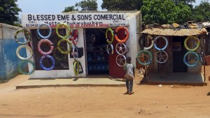 Local Bicycle Shop Masivinga Area