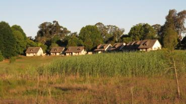 From a wetland area to the cottages