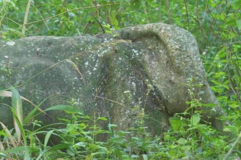 Elephant Rock - Decklan Jordaan.