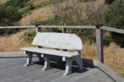 Bench on way to beach