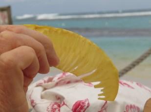 Breadfruit crisp