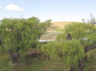 Wakkerstroom Wetlands from the bridge