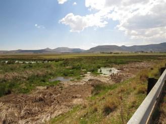 Wakkerstroom Wetlands