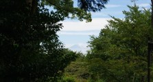 All of a sudden, we spotted Mt Fuji in the distance.