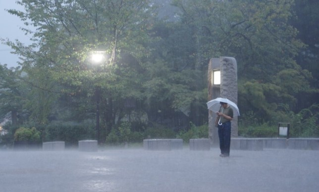 We had another typhoon and loads of rain in Kyoto. Some are more cool about it than others.