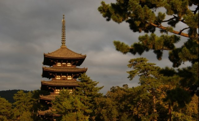 Late afternoon in Nara, just before it gets dark and tourists and deer retreat to their homes.