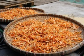 Shrimp shells drying in the sun.
