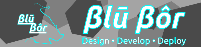 Blu Bor LLC || Meridian, ID