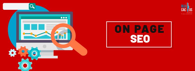 BluCactus Qué es el on page SEO y cómo funciona posicionamiento web organico busqueda organica web