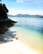 【Instagram】先日までのアイコン画像だった写真。これは、以前に大久野島で撮ったモノ。