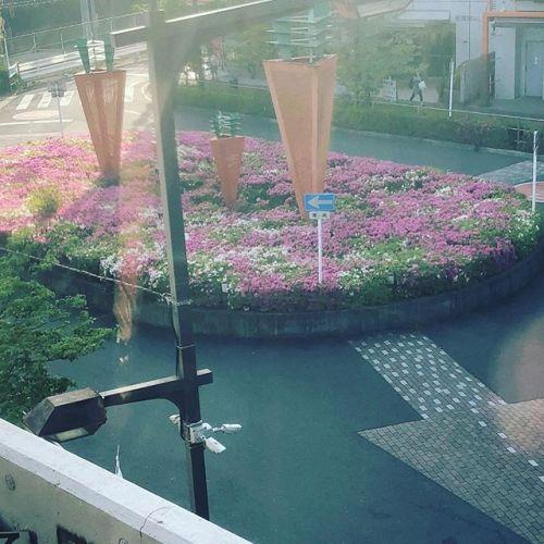 電車からの景色。たしか北朝霞の駅だったかな