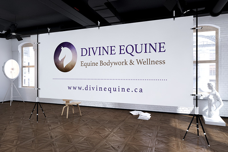 Divine Equine - Banner Design