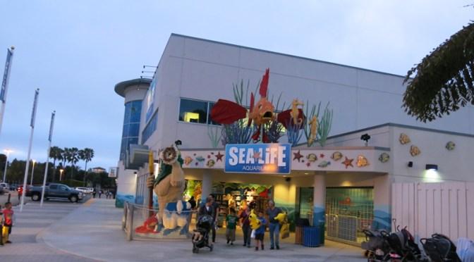 サンディエゴ旅行記2 レゴランド水族館