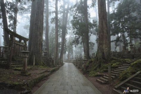 Koyasan (Mt. Koya) (C) JNTO