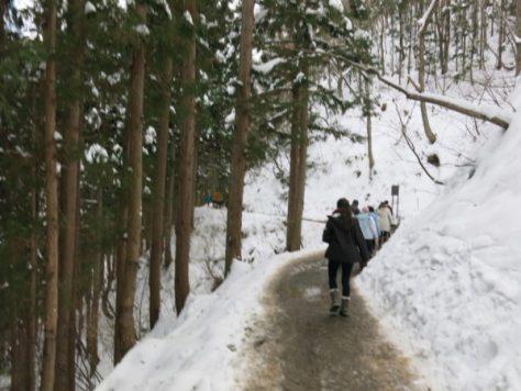 2016 winter Japan trip 951