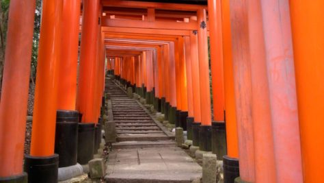 Torii gates in Fushimi Inari shrine in Kyoto