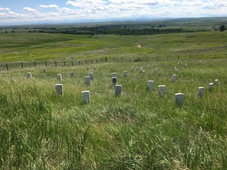 Little Bighorn Battlefield, Last Stand Hill, Custer's memorial marker is in the center with the dark face / Jo Roberts