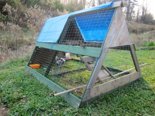 Chicken Tractor for Bantams