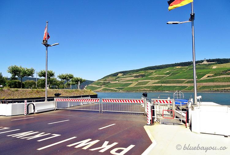 Blick von der Autofähre Rüdesheim-Bingen auf die Weinberge zwischen Rüdesheim und Assmannshausen.
